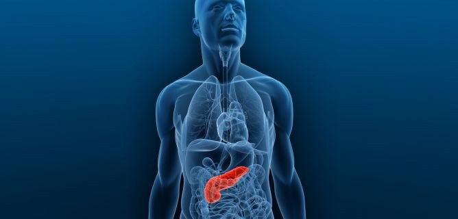 cancer-pancreas-xl-668x400x80xX