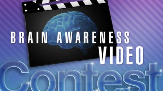 petit Video Contest Logo