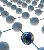 petit network1