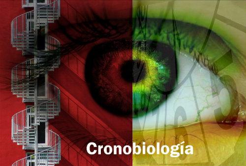 logo1-web