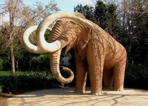 mamut parc de la ciutadella