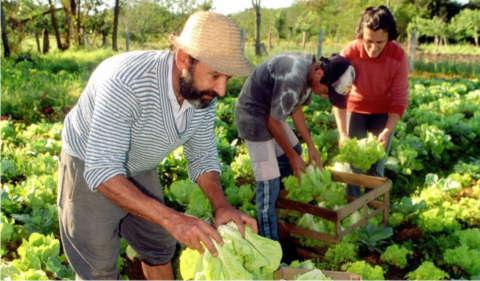 ley-agricultura-familiar-1
