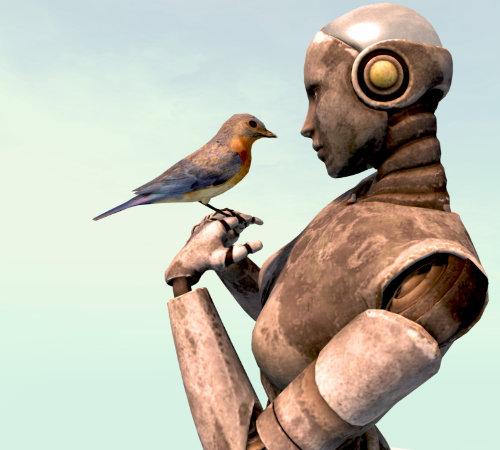 robot-bird