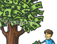 pp money tree1