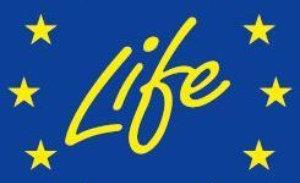 pp projecte-life