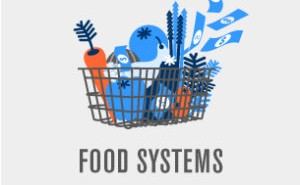 pp ood_systems