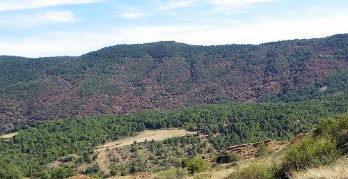 Pallars_25-004-12