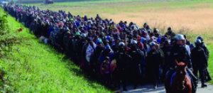 pp 2015-10-20T100706Z_777852497_LR1EBAK0S3I0D_RTRMADP_3_EUROPE-MIGRANTS-SLOVENIA