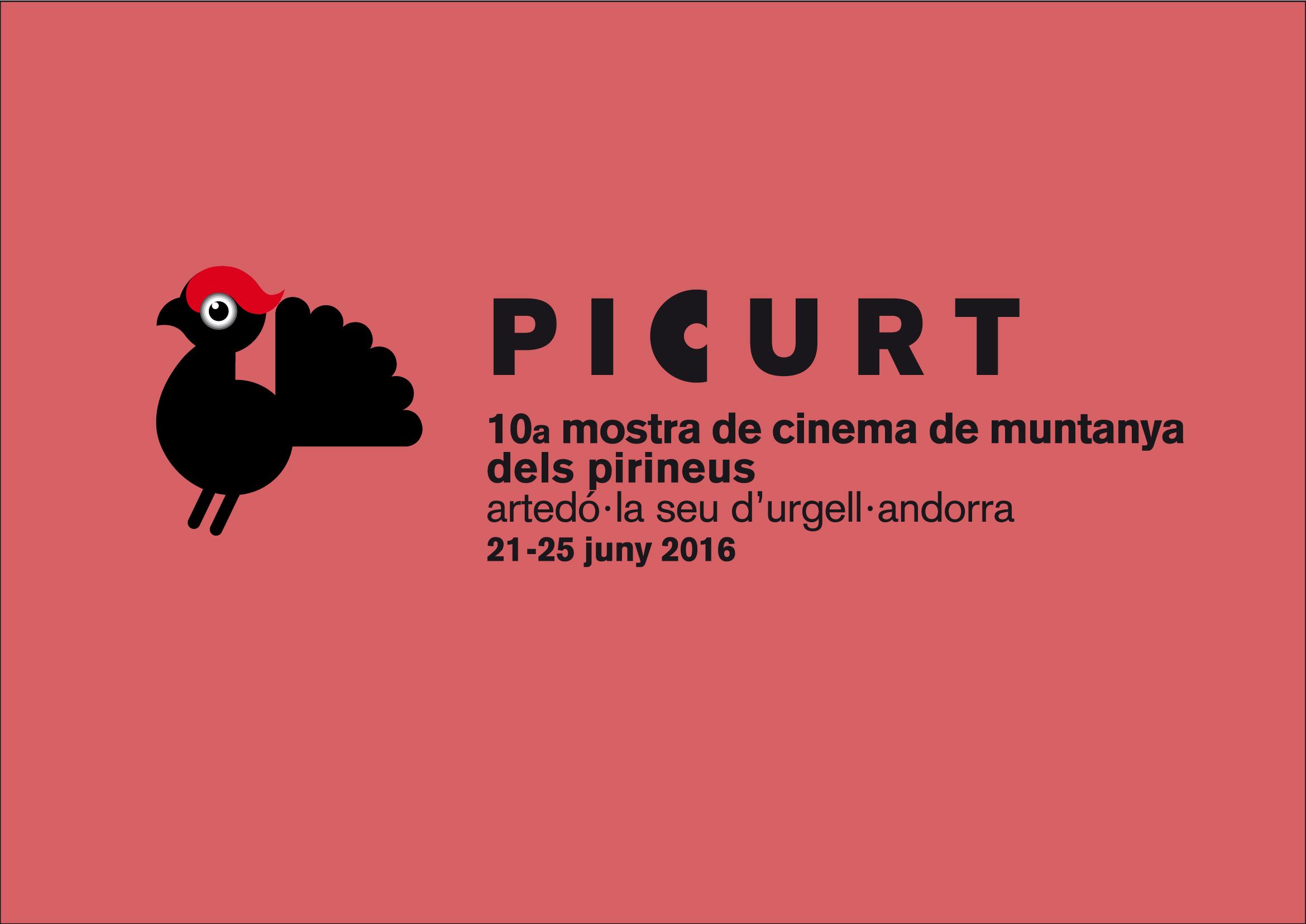 logo-picurt-16-2
