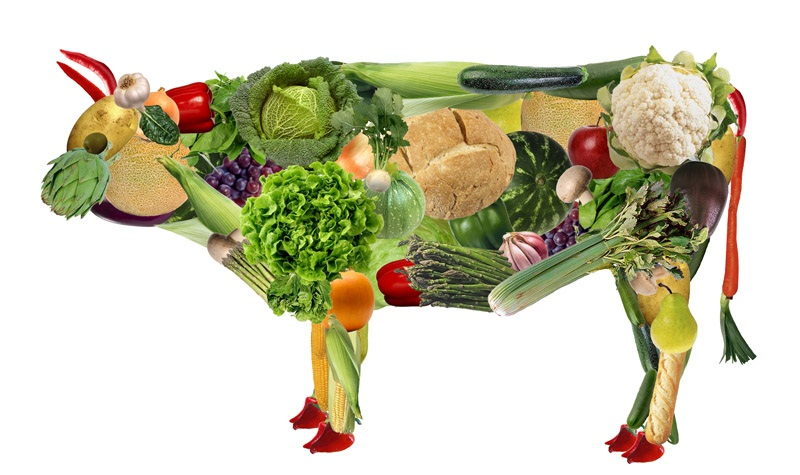 vegano1