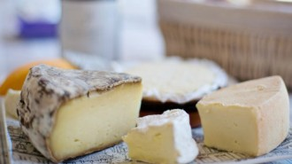 formatges