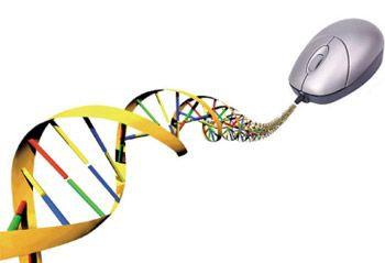 350-678-bioinformatica