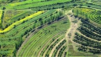 Agricultura-regenerativa3