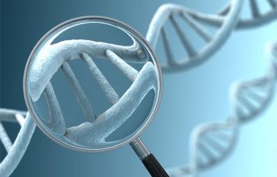 genes2