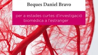 FBDA_bases_beques_2020_portada